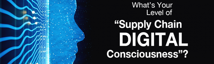 Digital Consciousness